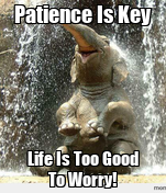 Patience Is Key Life Is Too Good To Worry!