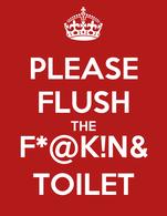 PLEASE FLUSH THE F*@K!N& TOILET