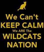 We Can't KEEP CALM We ARE The WILDCATS NATION