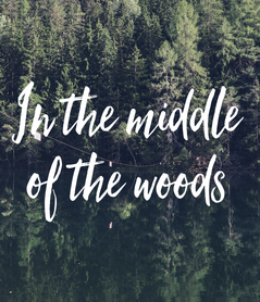 Poster: In the middle of the woods