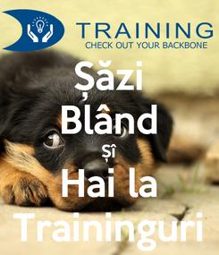 Poster: Șăzi Blând Șî Hai la Traininguri