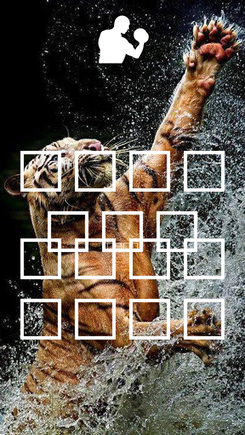 Poster: 非洲之虎 祝大家 青筋尽爆 拳入如风 拳出必胜