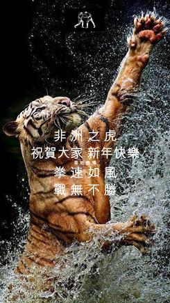 Poster: 非 洲 之 虎 祝賀大家 新年快樂 青 筋 盡 爆 拳 速 如 風 戰 無 不 勝