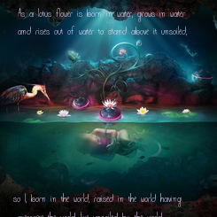 """Poster:  """"As a lotus flower is born in water, grows in water   and rises out of water to stand above it unsoiled,          so I, born in the world, raised"""