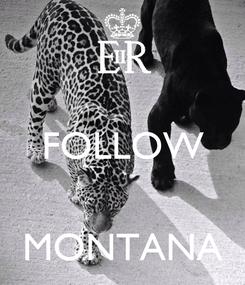 Poster:  FOLLOW   MONTANA