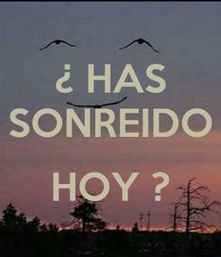 Poster: ¿ HAS SONREIDO  HOY ?