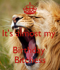 Poster:  It's almost my   Birthday  Bitchess