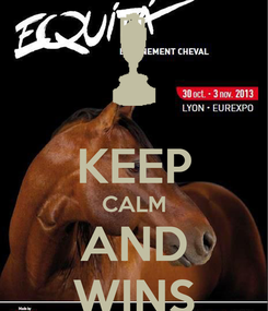 Poster:  KEEP CALM AND WINS