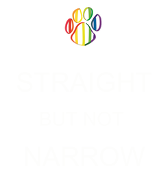 Poster:  STRAIGHT BUT NOT  NARROW