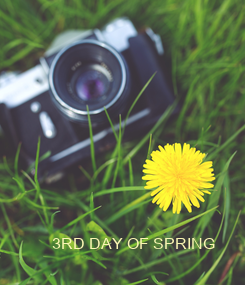 Poster: 3RD DAY OF SPRING