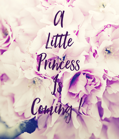 Poster: A Little Princess Is  Coming !