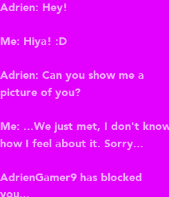 Poster: Adrien: Hey!  Me: Hiya! :D   Adrien: Can you show me a  picture of you?   Me: ...We just met, I don't know how I feel about it. Sorry...   AdrienGamer9 has blocked you...