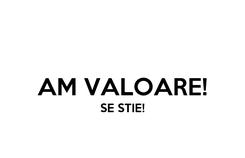 Poster:  AM VALOARE! SE STIE!