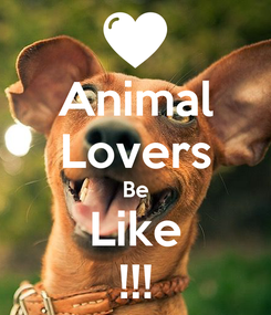 Poster: Animal Lovers Be Like !!!