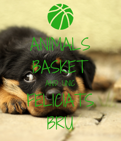Poster: ANIMALS BASKET AND UNIC FELICIATS BRU