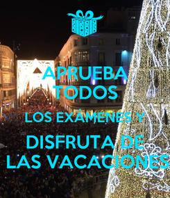 Poster: APRUEBA TODOS LOS EXÁMENES Y  DISFRUTA DE   LAS VACACIONES