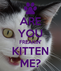 Poster: ARE YOU FREAKIN' KITTEN ME?