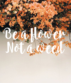 Poster: Be a flower Not a weed
