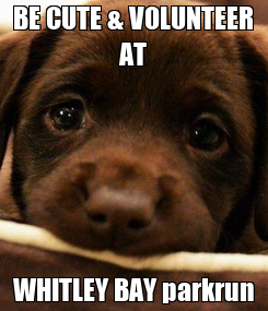 Poster: BE CUTE & VOLUNTEER AT WHITLEY BAY parkrun