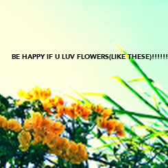 Poster: BE HAPPY IF U LUV FLOWERS(LIKE THESE)!!!!!!!!!!!!!!