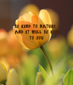 Poster: be kind to nature