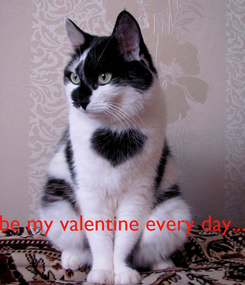 Poster:     be my valentine every day...