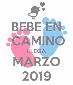 Poster: BEBE EN  CAMINO LLEGA MARZO 2019