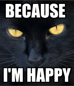 Poster: BECAUSE  I'M HAPPY