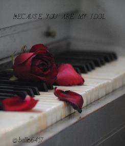 Poster: BECAUSE YOU ARE MY IDOL              @bella6457