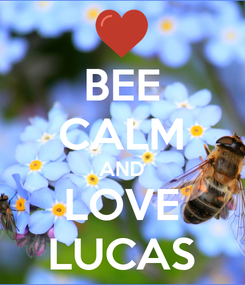 Poster: BEE CALM AND LOVE LUCAS