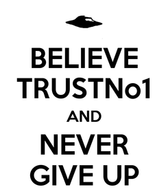 Poster: BELIEVE TRUSTNo1 AND NEVER GIVE UP