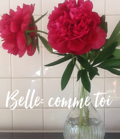 Poster: Belle: comme toi