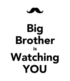 Poster: Big Brother is Watching YOU