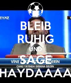 Poster: BLEIB RUHIG UND SAGE HAYDAAAA