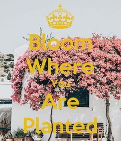 Poster: Bloom Where You Are Planted