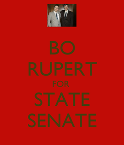 Poster: BO RUPERT FOR  STATE SENATE