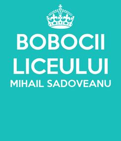 Poster: BOBOCII LICEULUI MIHAIL SADOVEANU