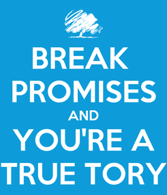 Poster: BREAK  PROMISES AND YOU'RE A TRUE TORY