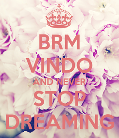 Poster: BRM VINDO AND NEVER STOP DREAMING