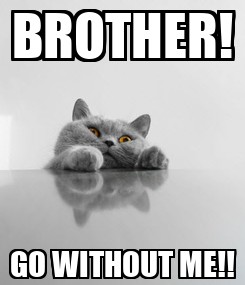 Poster: BROTHER! GO WITHOUT ME!!