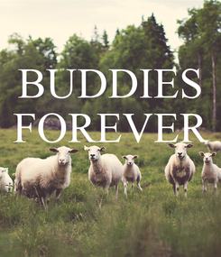 Poster: BUDDIES FOREVER