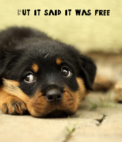 Poster: But it said it was free