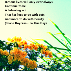 Poster: But our lives will only ever always Continue to be A balancing act That has less to do with pain And more to do with beauty. (Shane Koyczan - To This Day)