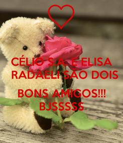 Poster: CÉLIO S.A. E ELISA   RADAELI SÃO DOIS   BONS AMIGOS!!! BJSSSSS