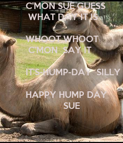 Poster: C'MON SUE GUESS 
