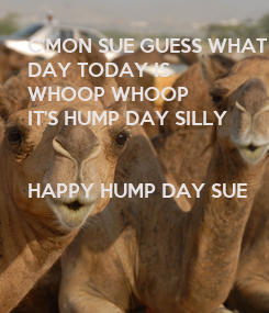 Poster: C'MON SUE GUESS WHAT 