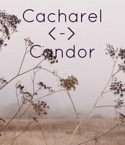 Poster: Cacharel <-> Candor