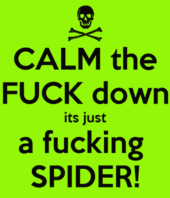 Poster: CALM the FUCK down its just a fucking  SPIDER!