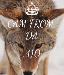 Poster: CAM FROM  DA  .410