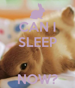 Poster: CAN I SLEEP   NOW?